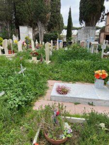 "Ostia Antica, degrado sulle tombe dei ""pionieri"" 2"