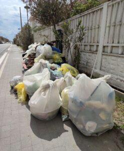 Ardea, i volontari puliscono la spiaggia: raccolti oltre 800 chili di plastica 5