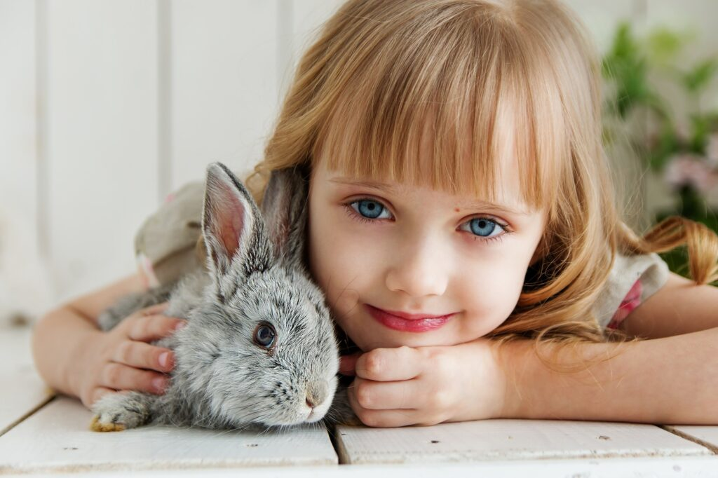 Il coniglio domestico: un vero amico silenzioso per il supporto emotivo dei malati 3