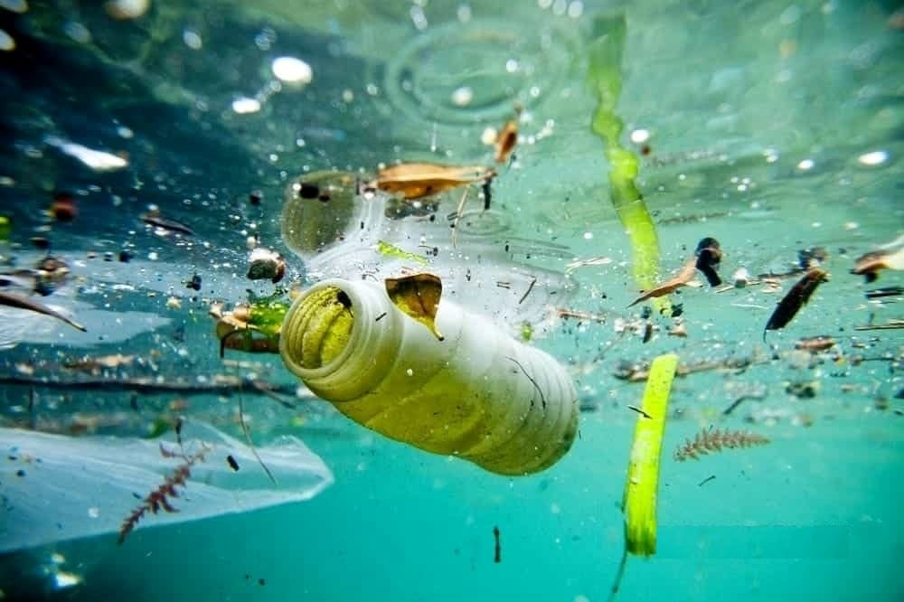 rifiuti marina in acqua