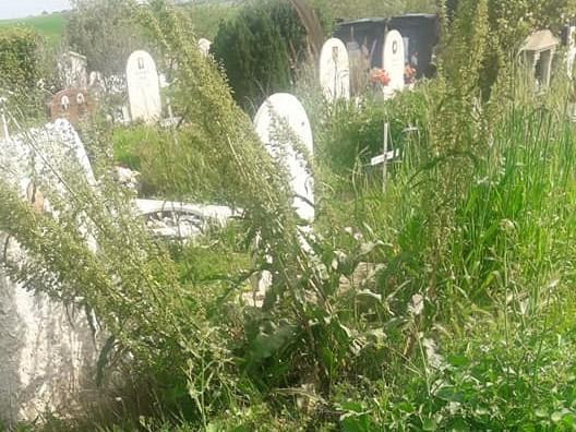 Cimitero Laurentino