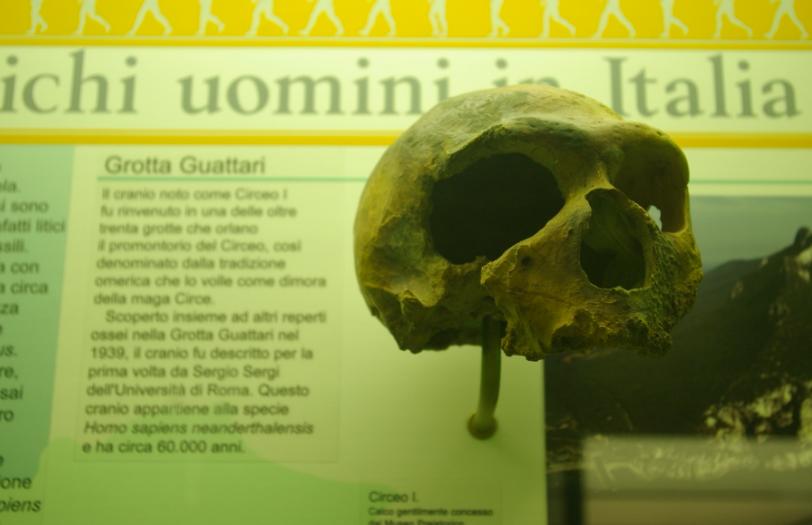 Circeo, scoperti nella Grotta Guattari reperti fossili di altri 9 uomini di Neanderthal 1