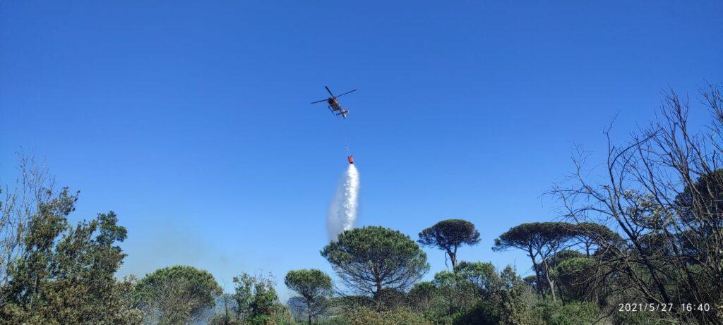 Brucia la pineta di Castel Fusano: vigili del fuoco sul posto (VIDEO) 2