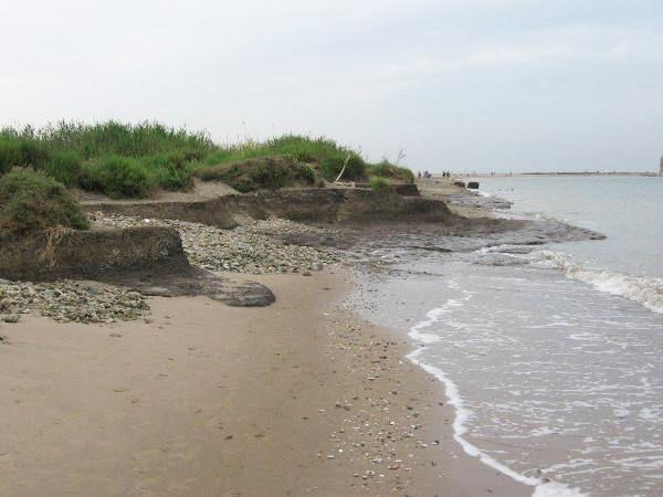 """WWF Litorale Laziale: """"Le pulizie della spiagge, occasioni di aggregazione"""". IL CALENDARIO 1"""