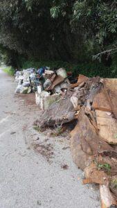 Fregene, i volontari puliscono la Lecceta: trovati anche water e bidet (VIDEO) 1