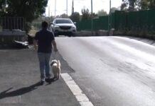 strade pericolose via agostino chigi