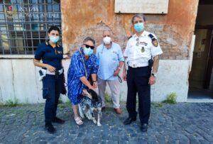 Vagava spaventata sul lungotevere, cagnolina salvata dalla Polizia Locale 2