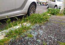 ladri d'auto scatenati