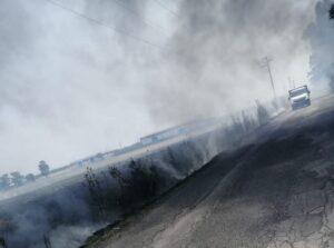 Incendio a Parco Leonardo: a fuoco vari ettari di sterpaglie e alberi 1
