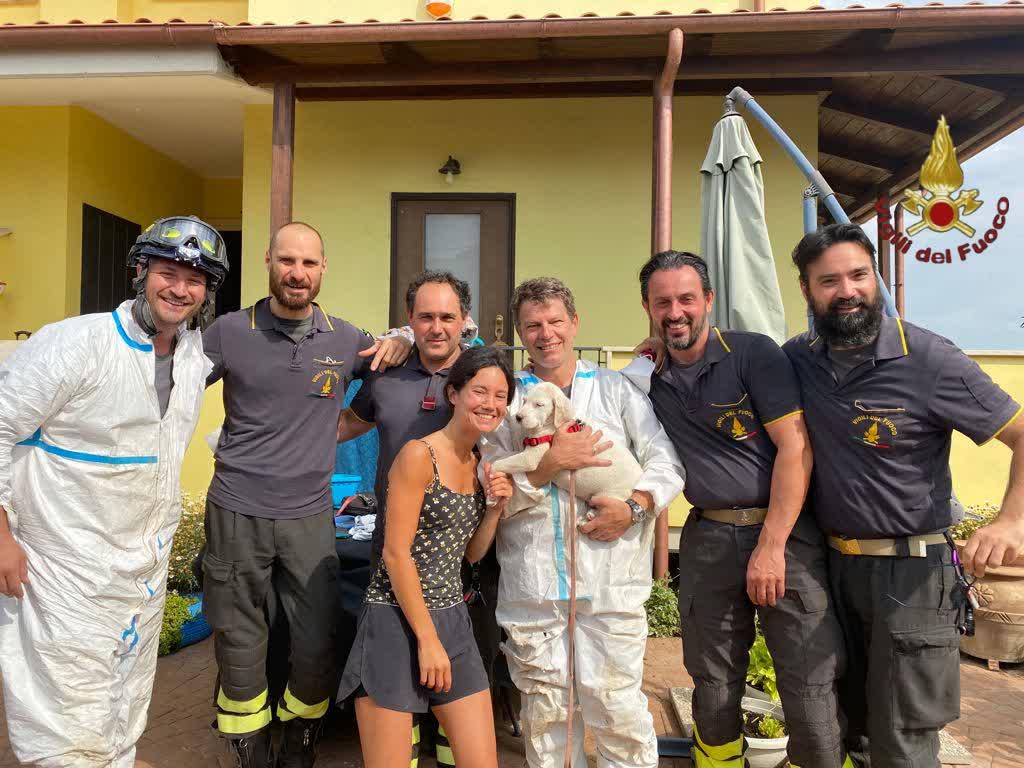 Pompieri e agenti soccorritori, recuperati un cucciolo di cane e una gabbianella 1