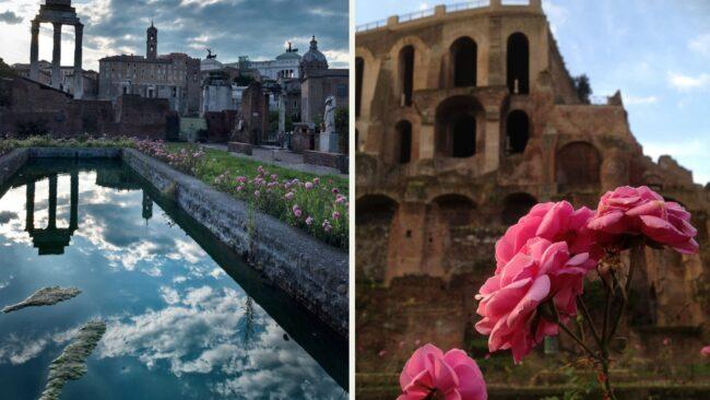La Casa delle Vestali nel Foro Romano riapre al pubblico dopo il recupero 1