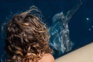 Pesce luna nelle acque di Ostia: l'avvistamento spettacolare dell'associazione Sottoalmare (VIDEO) 1