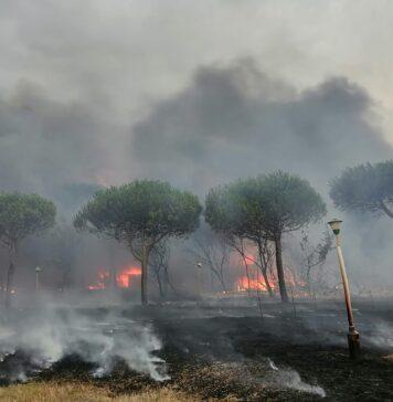 incendi civitavecchia
