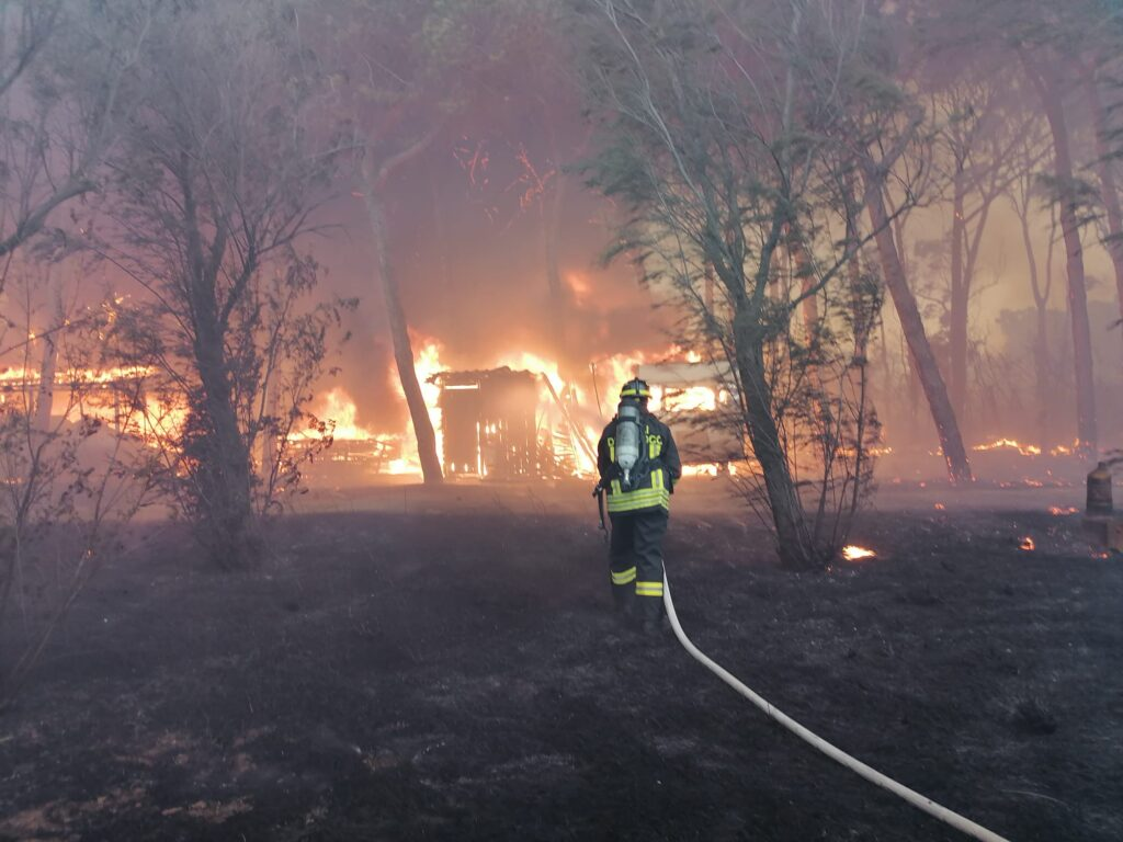 Civitavecchia come la Sardegna: due incendi nella notte. Distrutto un campeggio 2