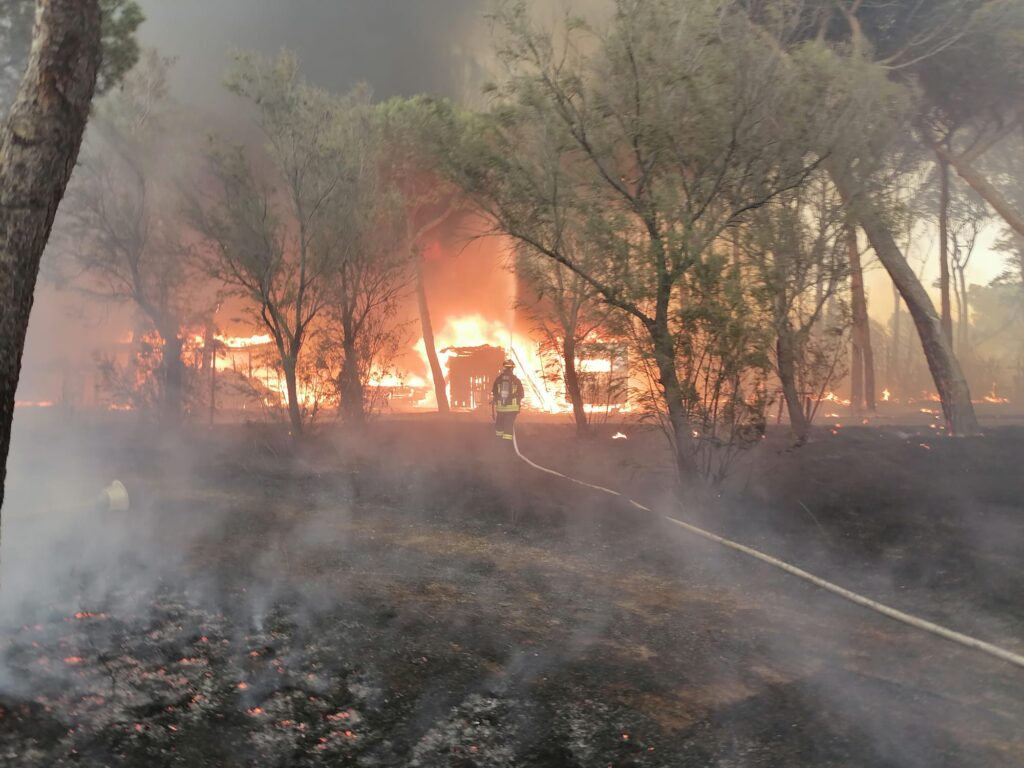 Civitavecchia come la Sardegna: due incendi nella notte. Distrutto un campeggio 1
