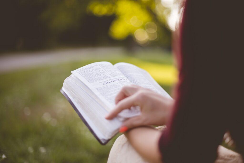 Torna la Festa del libro e della lettura di Ostia. Edizione 2021 dedicata a Dante 2