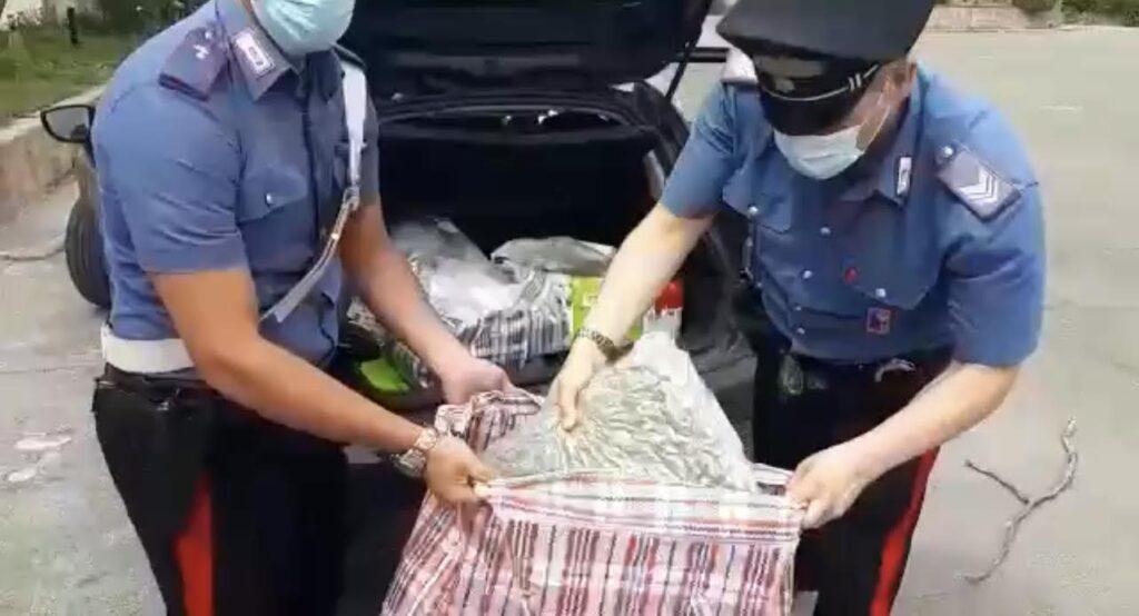 Roma, sequestro record dei carabinieri: arrestato pusher con 72 kg di droga (VIDEO) 1