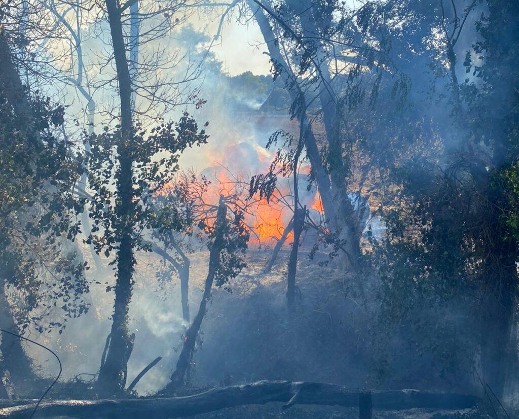 Roma, ancora incendi: a fuoco una collina in zona Boccea 1