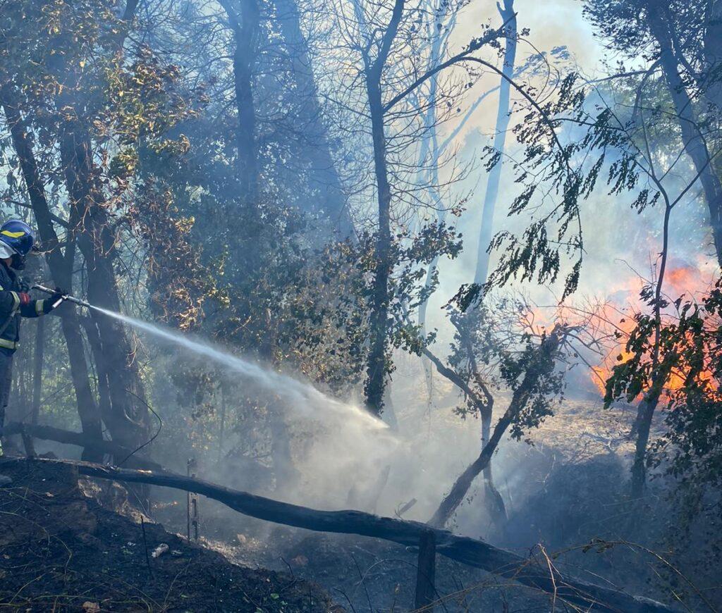 Roma, ancora incendi: a fuoco una collina in zona Boccea 2