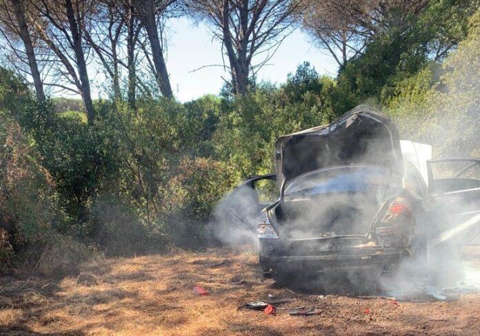 auto a fuoco in pineta