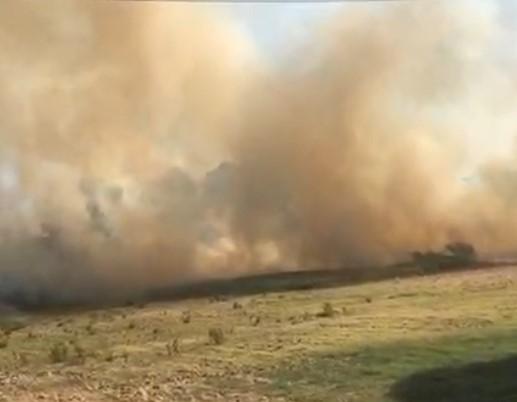 Ostia: fiamme su via dei Pescatori, chiusa in direzione Casal Palocco (VIDEO) 1