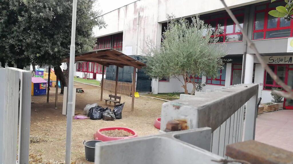 Ostia, scuole dell'infanzia invase da erbacce: genitori costretti a fare i giardinieri (VIDEO) 1