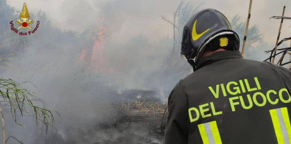 Torvaianica: drammatica situazione per l'incendio in un bosco difficile da raggiungere 1