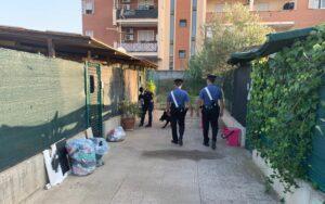 Blitz dei carabinieri a Civitavecchia: droga, occupazioni abusive e furto di elettricità 1