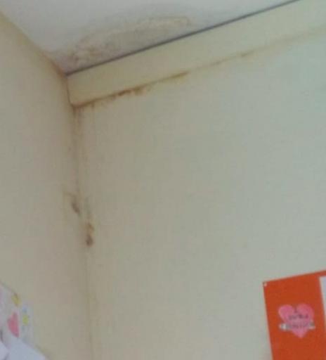 Casal Palocco, muffa e acqua dal soffitto all'Istituto comprensivo Tullia Zevi 1